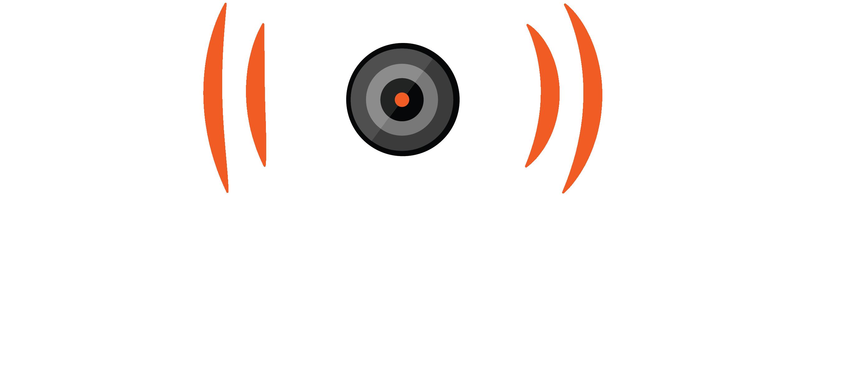 Stabilized Cinema Logo